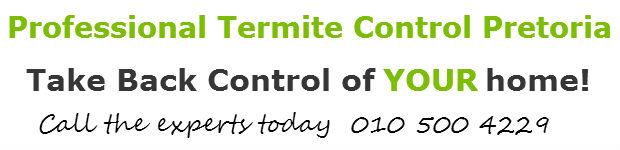 termite fumigation pretoria